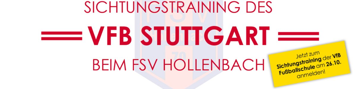 VfB Sichtungstraining